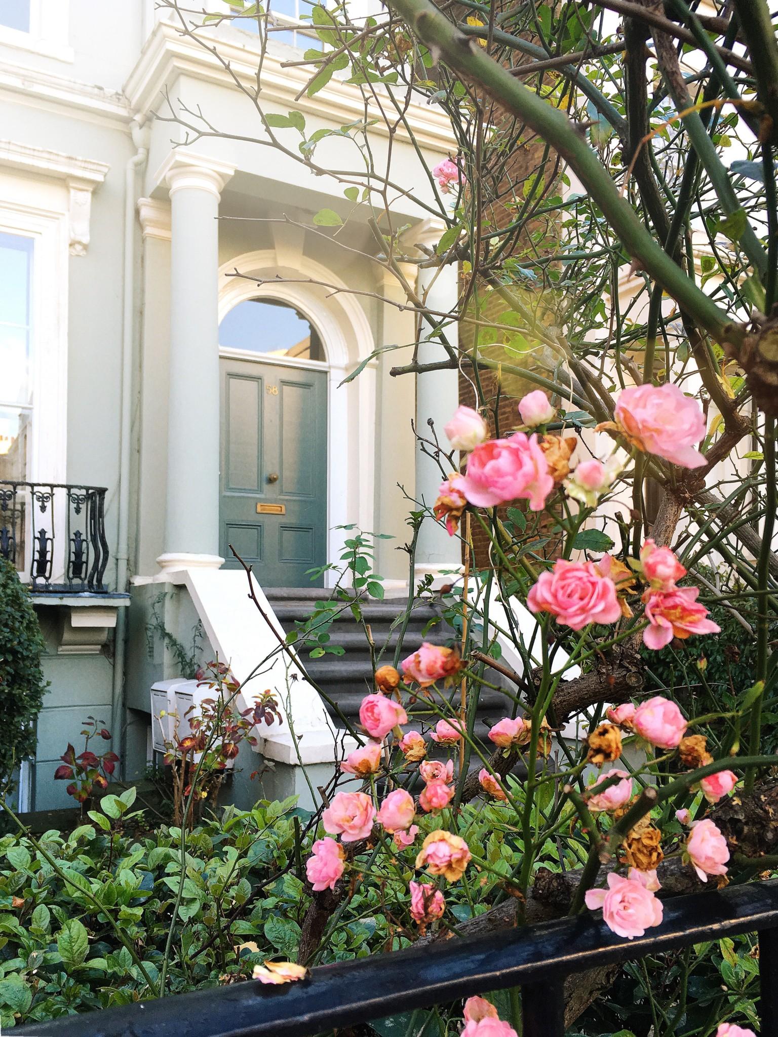Как прошла моя осень 2017 | Блог Варвары Лялягиной «Дом, в который хочется приходить»