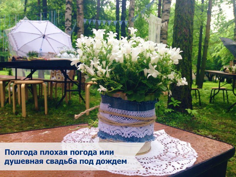 свадьба под дождем (15)