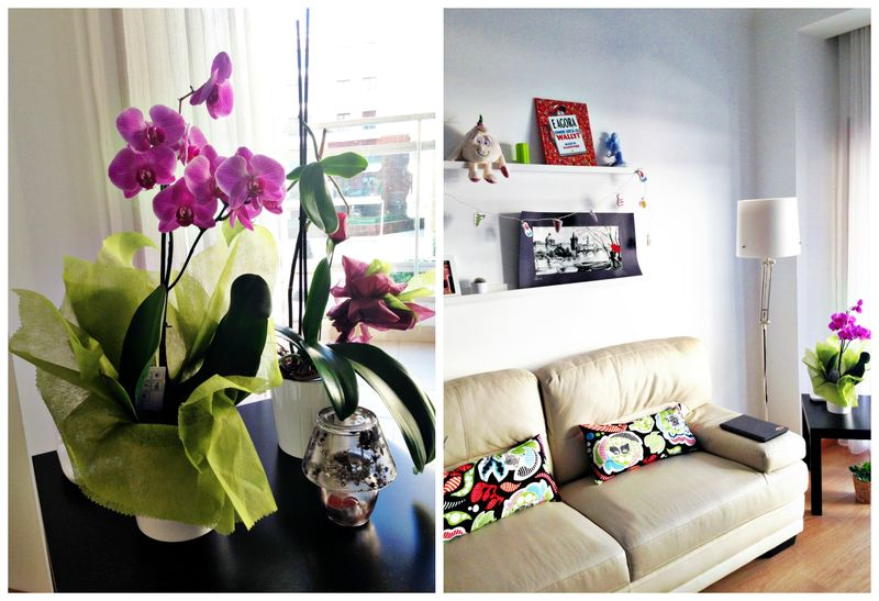 Hometocome-квартира-в-лиссабоне03
