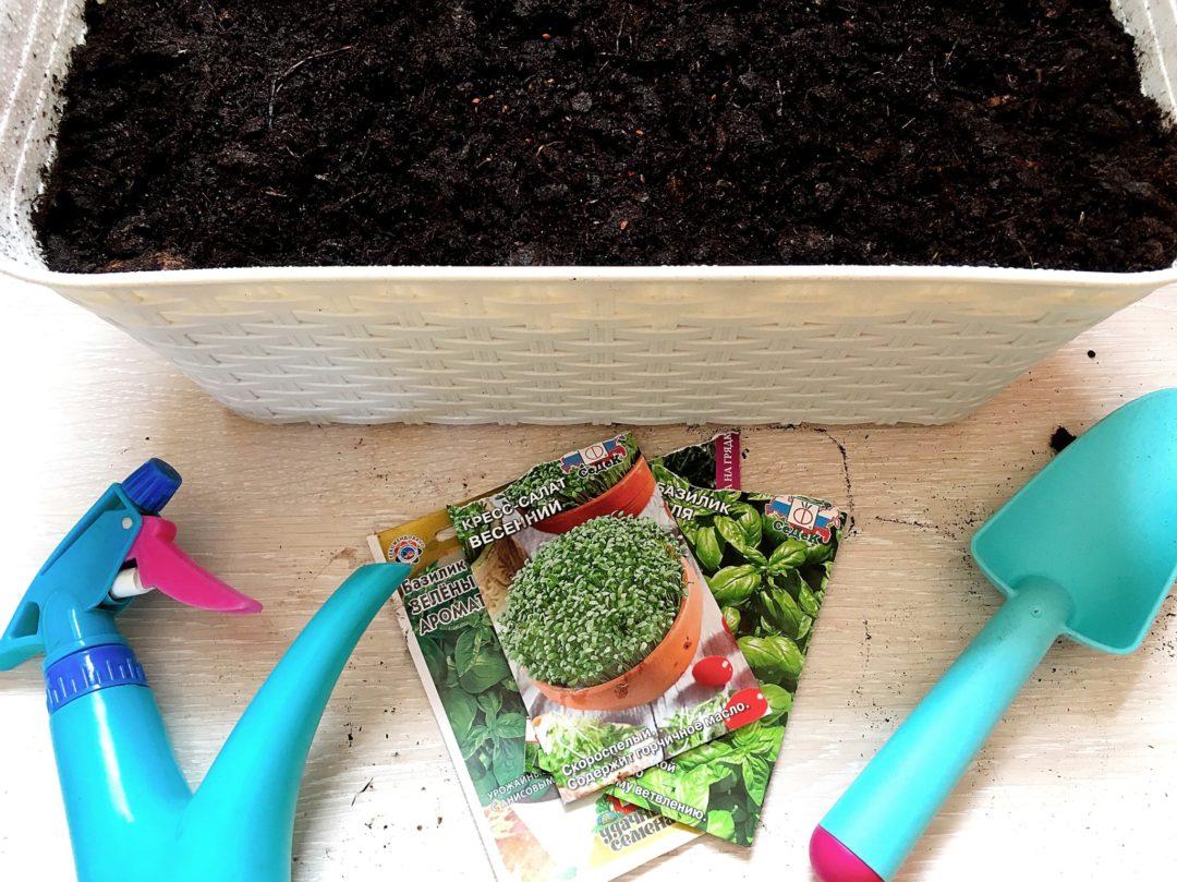Мой домашний огород на подоконнике | Блог Варвары Лялягиной «Дом, в который хочется приходить»