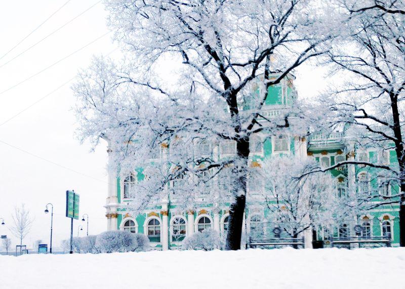 Эрмитаж под снегом | Блог Дом, в который хочется приходить