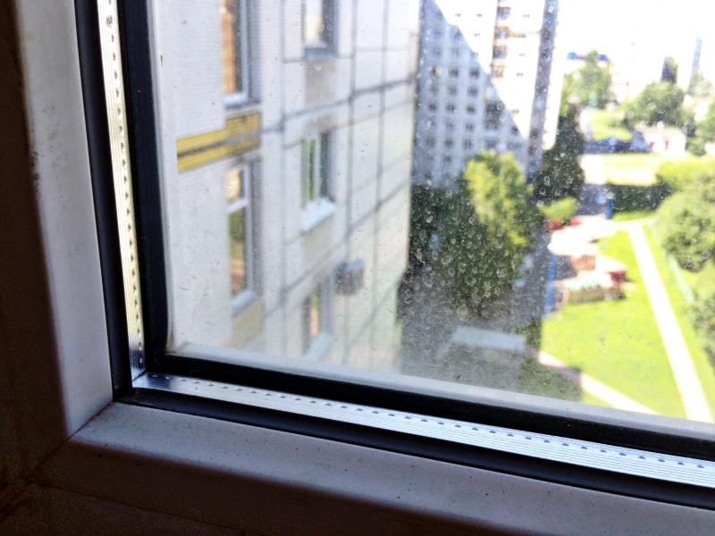 Один магический способ вымыть окна, затратив минимум усилий | Блог Варвары Лялягиной Дом, в который хочется приходить